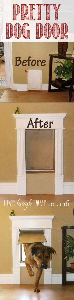 blog-dog-door-frame-attractive