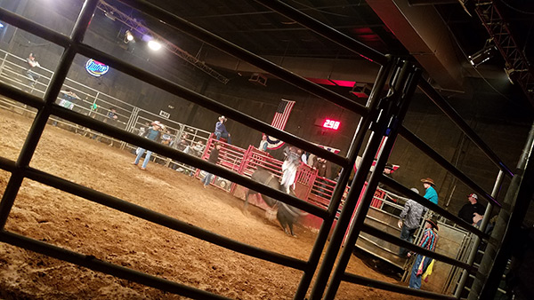 blog-living-live-bullriding-inside-bar-oklahoma-city-cowboys