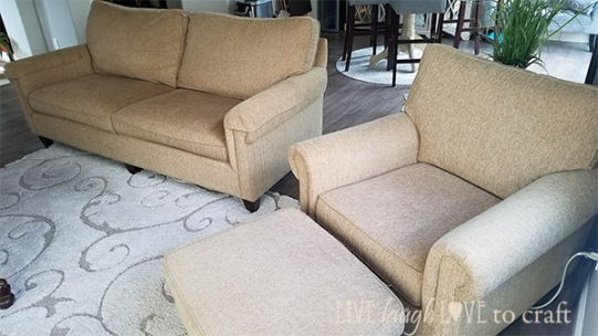 living-room-remodel-old-couch.jpg